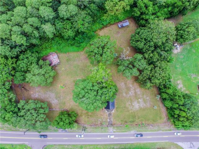 17311 Gunn Highway, Odessa, FL 33556 (MLS #T3135402) :: RE/MAX Realtec Group