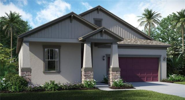 9930 Ivory Drive, Ruskin, FL 33573 (MLS #T3135456) :: The Duncan Duo Team