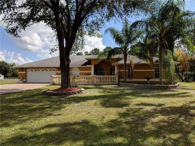 3352 Haystack Road, Wesley Chapel, FL 33543 (MLS #T3135482) :: The Light Team