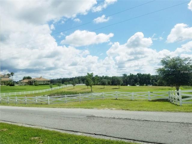 29887 Bayhead Road, Dade City, FL 33523 (MLS #T3135541) :: The Lockhart Team