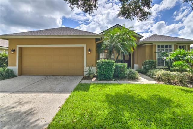3005 Bent Creek Drive, Valrico, FL 33596 (MLS #T3135589) :: Dalton Wade Real Estate Group