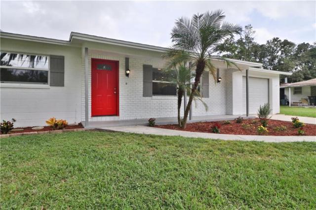 13804 Meadow Oaks Drive, Dover, FL 33527 (MLS #T3135605) :: Medway Realty