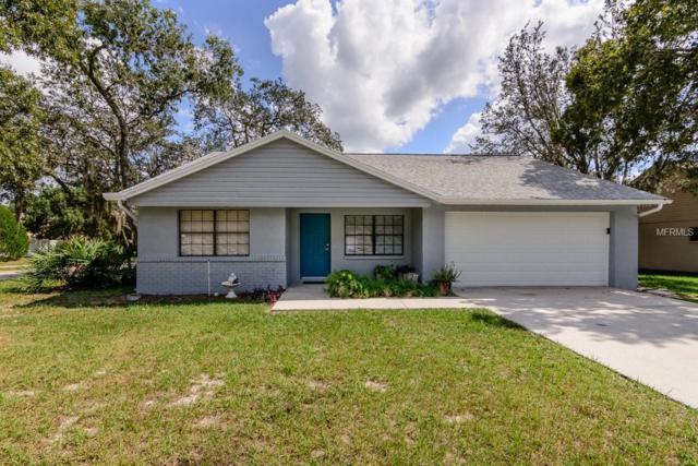 10212 Turkey Oak Drive, New Port Richey, FL 34654 (MLS #T3135655) :: RE/MAX CHAMPIONS