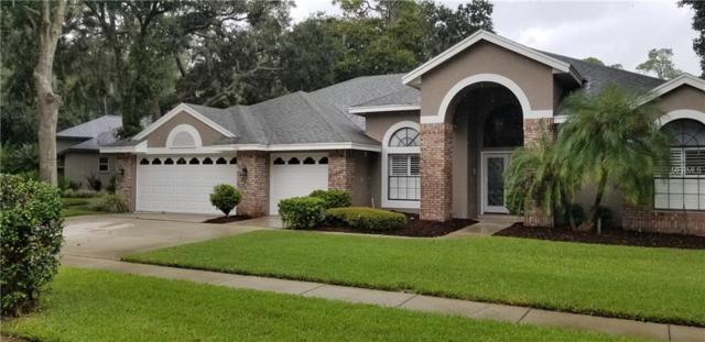 2106 Crooked Creek Way, Valrico, FL 33596 (MLS #T3135736) :: Dalton Wade Real Estate Group