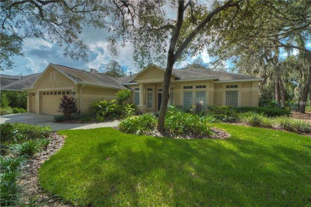15920 Sorawater Drive, Lithia, FL 33547 (MLS #T3135845) :: The Duncan Duo Team