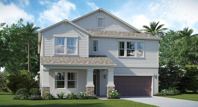 13915 Snowy Plover Lane, Riverview, FL 33579 (MLS #T3135862) :: The Duncan Duo Team