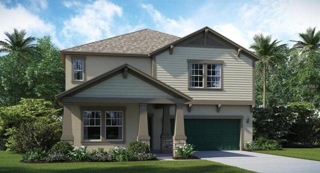 10606 Great Cormorant Drive, Riverview, FL 33579 (MLS #T3135893) :: The Duncan Duo Team