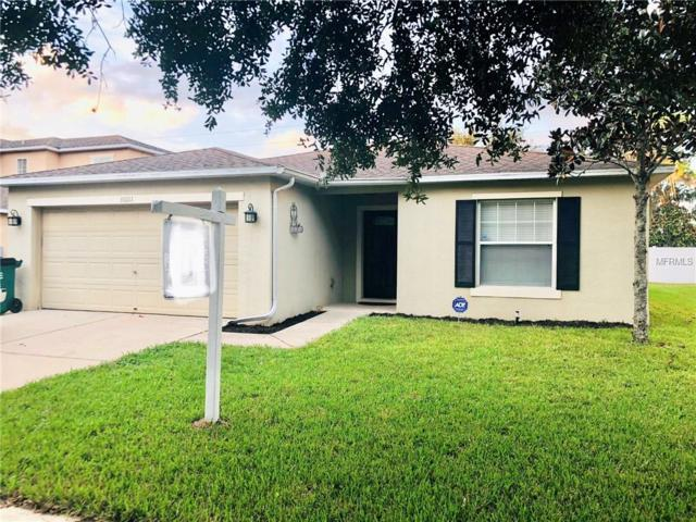 31011 Temple Stand Avenue, Wesley Chapel, FL 33543 (MLS #T3135904) :: The Duncan Duo Team