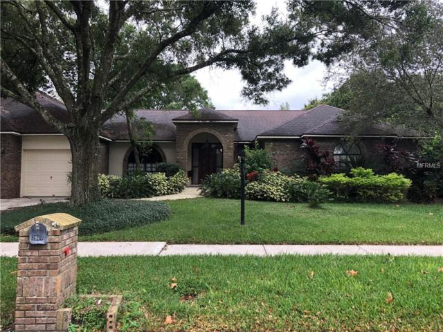 2907 Timber Knoll Drive, Valrico, FL 33596 (MLS #T3135918) :: Dalton Wade Real Estate Group