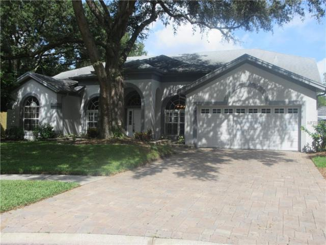 4411 Round Lake Court, Tampa, FL 33618 (MLS #T3135952) :: McConnell and Associates