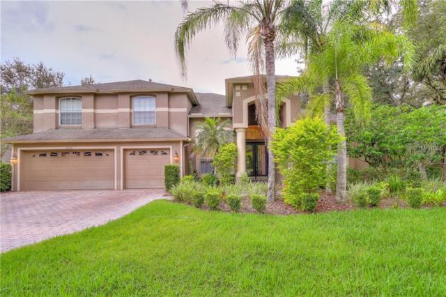 16324 Sambourne Lane, Tampa, FL 33647 (MLS #T3136081) :: Team Bohannon Keller Williams, Tampa Properties