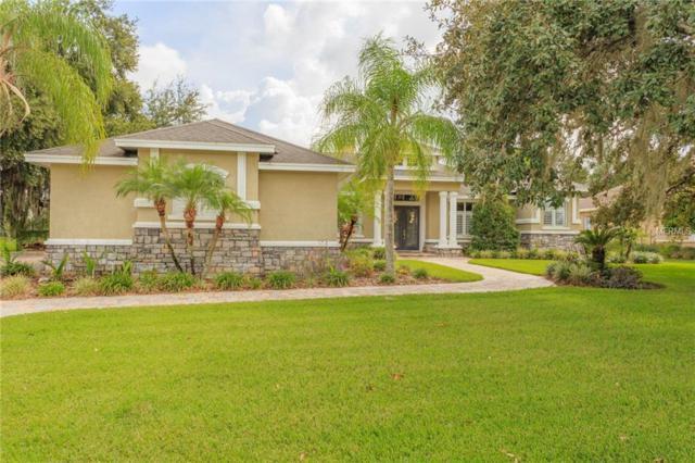 6106 Wild Orchid Drive, Lithia, FL 33547 (MLS #T3136124) :: Dalton Wade Real Estate Group