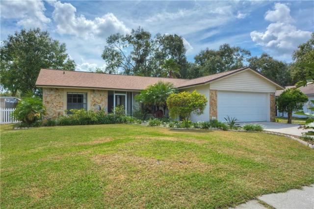 1207 Briarpark Way, Valrico, FL 33596 (MLS #T3136152) :: Dalton Wade Real Estate Group