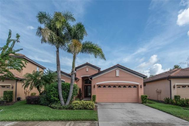 133 Silver Falls Drive, Apollo Beach, FL 33572 (MLS #T3136156) :: The Duncan Duo Team