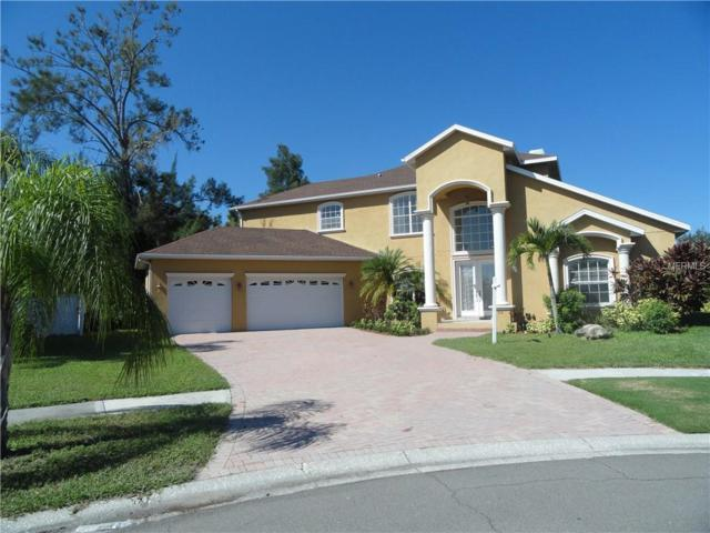 948 Bunker View Drive, Apollo Beach, FL 33572 (MLS #T3136183) :: The Duncan Duo Team