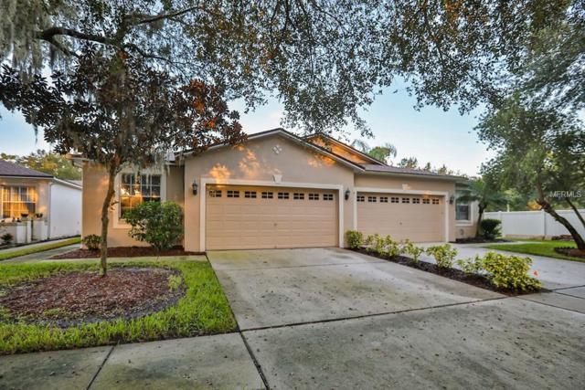 6907 Gray Oak Place, Riverview, FL 33578 (MLS #T3136236) :: Lovitch Realty Group, LLC