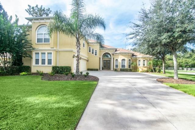 6217 Wild Orchid Drive, Lithia, FL 33547 (MLS #T3136281) :: Dalton Wade Real Estate Group