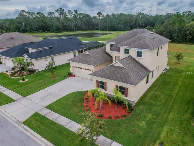 27202 Sora Boulevard, Wesley Chapel, FL 33544 (MLS #T3136303) :: The Duncan Duo Team