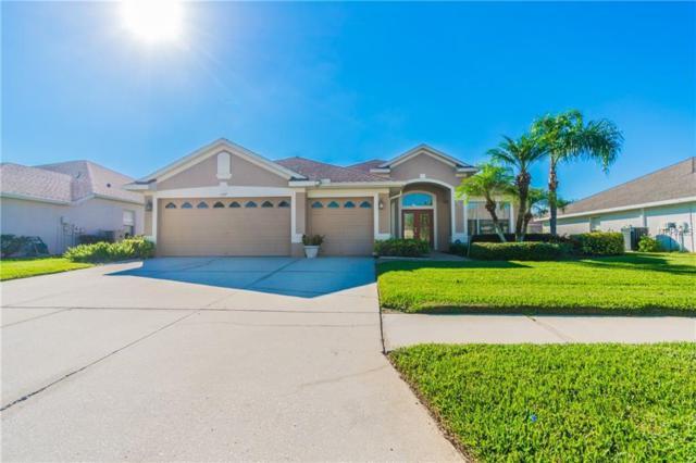 3147 Bowfin Drive, Land O Lakes, FL 34639 (MLS #T3136307) :: Team Bohannon Keller Williams, Tampa Properties