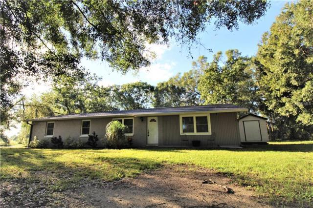 18807 Red Bird Lane, Lithia, FL 33547 (MLS #T3136309) :: Dalton Wade Real Estate Group