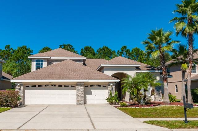 23517 Vistamar Court, Land O Lakes, FL 34639 (MLS #T3136326) :: Team Bohannon Keller Williams, Tampa Properties