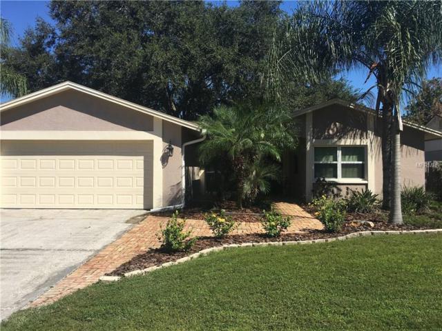 15707 Country Lake Drive, Tampa, FL 33624 (MLS #T3136334) :: Team Bohannon Keller Williams, Tampa Properties