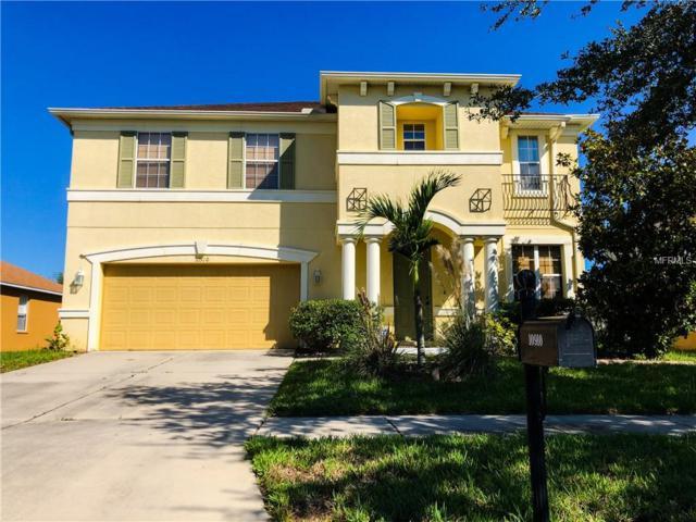 10910 Pond Pine Drive, Riverview, FL 33569 (MLS #T3136396) :: The Light Team