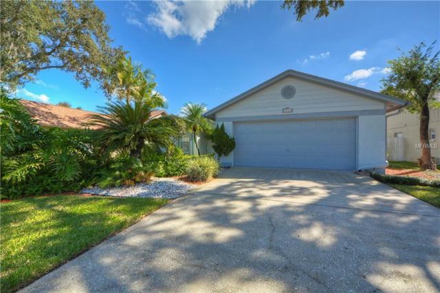 13503 Fawn Ridge Boulevard, Tampa, FL 33626 (MLS #T3136418) :: Griffin Group
