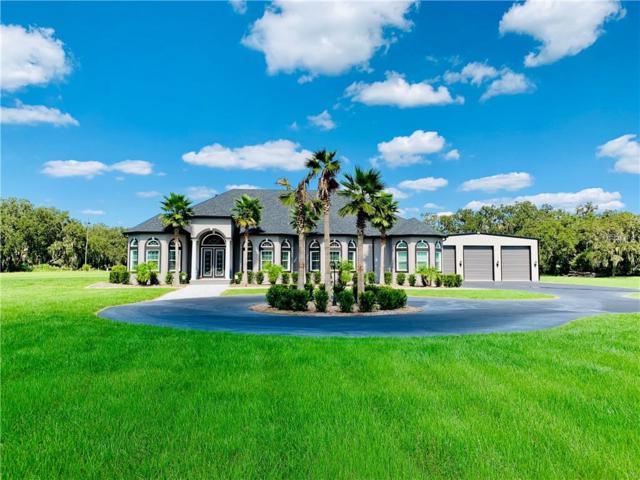 602 Swilley Road, Plant City, FL 33567 (MLS #T3136423) :: Dalton Wade Real Estate Group