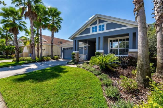 20132 Heritage Point Drive, Tampa, FL 33647 (MLS #T3136470) :: Team Bohannon Keller Williams, Tampa Properties