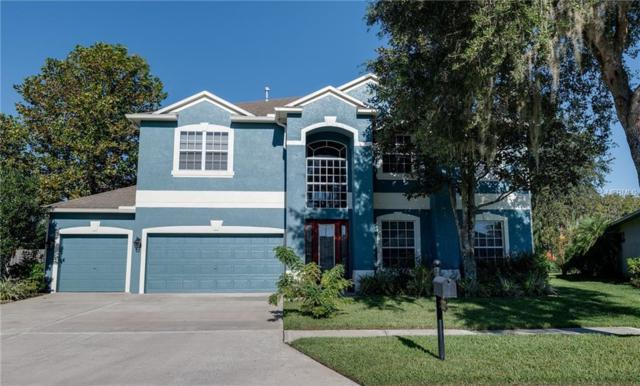 3327 Ashmonte Drive, Land O Lakes, FL 34638 (MLS #T3136484) :: Team Bohannon Keller Williams, Tampa Properties