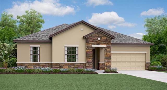 9823 Sage Creek Drive, Ruskin, FL 33573 (MLS #T3136496) :: The Duncan Duo Team