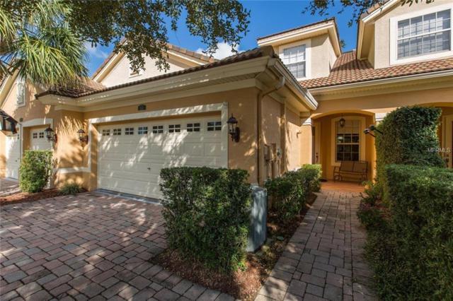 7345 Roebellini Avenue, Trinity, FL 34655 (MLS #T3136504) :: Team Virgadamo