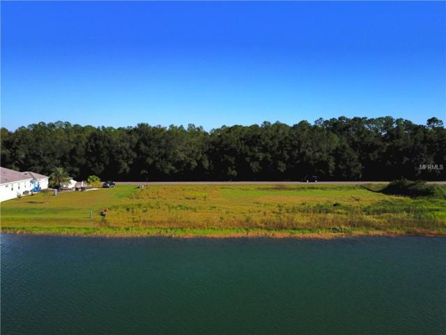 24121 Hideout Trail, Land O Lakes, FL 34639 (MLS #T3136518) :: Delgado Home Team at Keller Williams