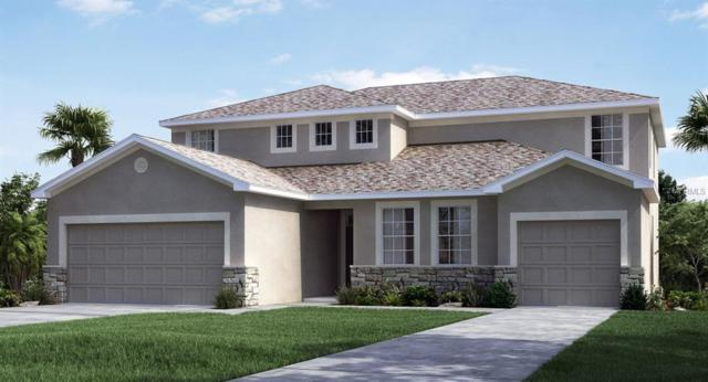 9831 Sage Creek Drive, Ruskin, FL 33573 (MLS #T3136522) :: The Duncan Duo Team