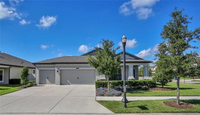 8323 Bluevine Sky Drive, Land O Lakes, FL 34637 (MLS #T3136541) :: Team Bohannon Keller Williams, Tampa Properties