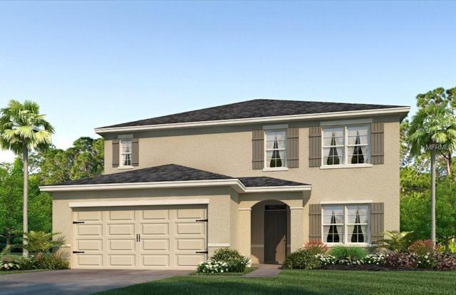 11854 Myrtle Rock Drive, Riverview, FL 33578 (MLS #T3136542) :: Remax Alliance