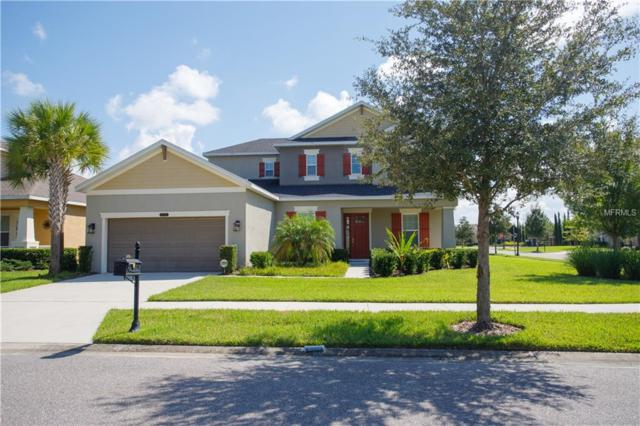8770 Bella Vita Circle, Land O Lakes, FL 34637 (MLS #T3136555) :: NewHomePrograms.com LLC