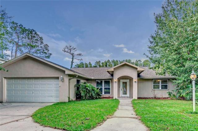 5144 Londonderry Lane, Wesley Chapel, FL 33543 (MLS #T3136582) :: Team Bohannon Keller Williams, Tampa Properties
