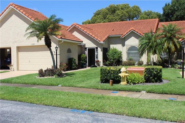 1162 Rustlewood Court, Palm Harbor, FL 34684 (MLS #T3136588) :: FL 360 Realty