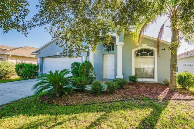7310 Newhall Pass Lane, Wesley Chapel, FL 33545 (MLS #T3136616) :: Team Bohannon Keller Williams, Tampa Properties