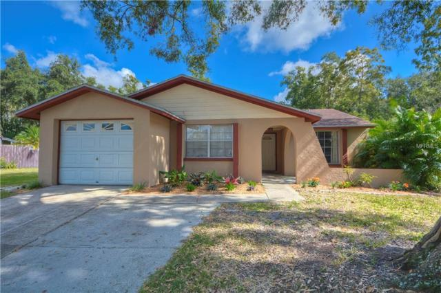 2701 Cedaridge Drive, Tampa, FL 33618 (MLS #T3136623) :: Team Virgadamo