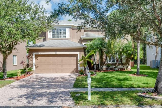 13210 Royal George Avenue, Odessa, FL 33556 (MLS #T3136630) :: Team Virgadamo