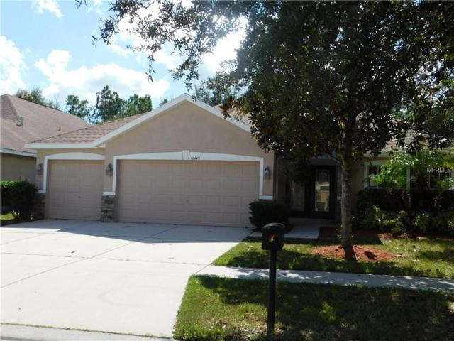16440 Bridgewalk Drive, Lithia, FL 33547 (MLS #T3136637) :: Medway Realty