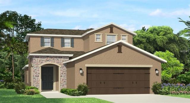 4711 Tramanto Lane, Wesley Chapel, FL 33543 (MLS #T3136667) :: RE/MAX CHAMPIONS