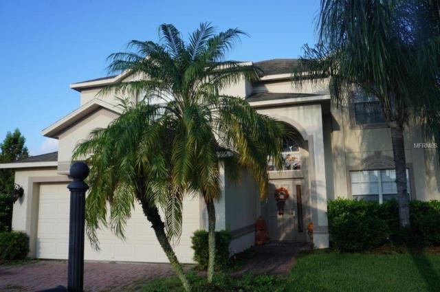 1329 Gallberry Court, Trinity, FL 34655 (MLS #T3136746) :: Team Virgadamo