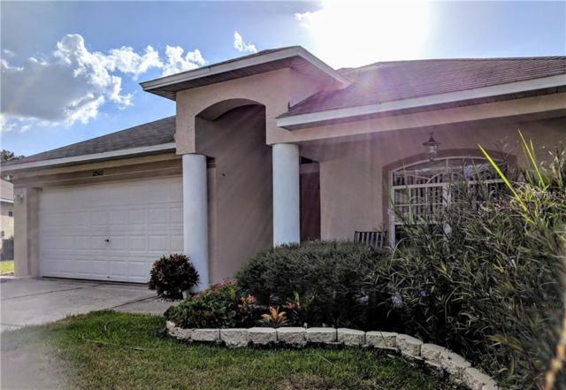 12502 Deerberry Lane, Tampa, FL 33626 (MLS #T3136751) :: NewHomePrograms.com LLC