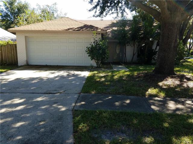 1518 Woonsocket Lane, Brandon, FL 33511 (MLS #T3136790) :: Welcome Home Florida Team