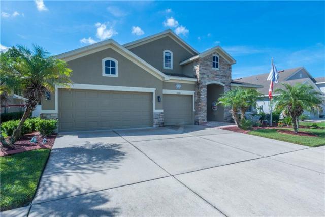 31626 Holcomb Pass, Wesley Chapel, FL 33543 (MLS #T3136877) :: RE/MAX CHAMPIONS