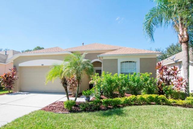 1611 Cresson Ridge Lane, Brandon, FL 33510 (MLS #T3136892) :: The Duncan Duo Team